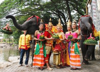 Elephants and staff at Nong Nooch Tropical Garden celebrated Loy Krathong a day early this year.