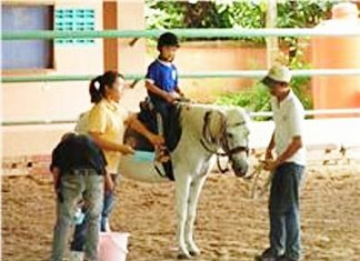 For physically handicapped and mentally disabled people, riding horses and ponies has become their first step into the outside world.