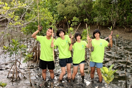Students dig into the mud to plant mangrove shoots as part of their sea conservation camp.