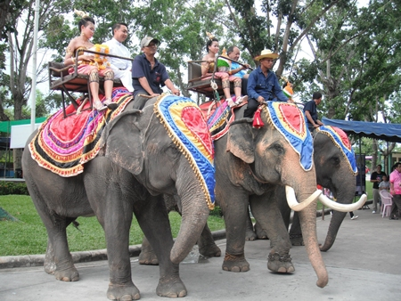 Elephants stop at the center with their precious cargo, Fr. Pattarapong Srivorakul (Father Peter) (left) and Nongprue Mayor Mai Chaiyanit (right), accompanied by women in traditional Thai dress.
