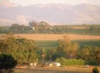 Barossa Valley, South Australia (Photo: Wine Australia).