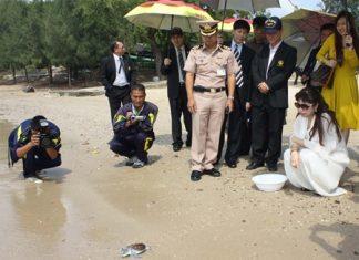 Sen. Pharanee Jongsukthanamanee sets free a one year-old Green turtle.