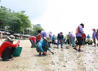 About 120 workers from six agencies collect sharp rocks that had washed ashore on Pattaya Beach.