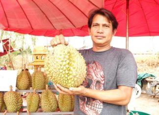 Vendor Direk Khaewdum sells his durian at the Hollywood three-way intersection in North Pattaya.