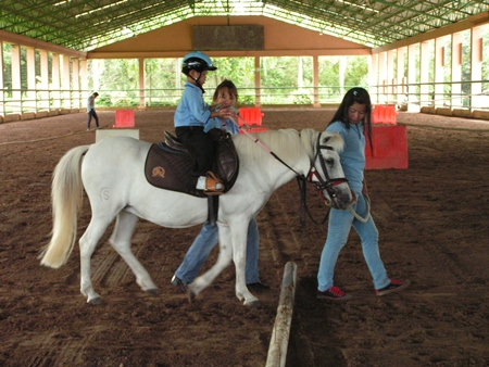 The horse moving naturally in walk simulates and synthesizes a movement as close to the human walk as is possible.
