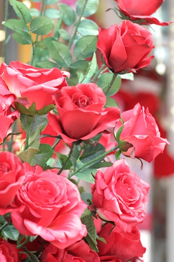 A rose, by any other price would smell as sweet.  But an 8 x rise in price is quite steep.