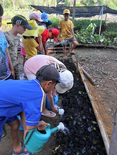 GIS students visit the mangrove trees in Sattahip.