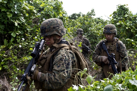 Marines and Sailors move through the jungle towards their objective during an amphibious assault as part of exercise Cobra Gold 2013 Feb. 14. (Photo by Lance Cpl. Codey Underwood)