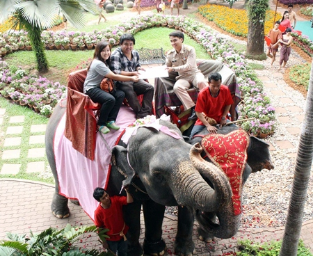 One of 99 couples to marry on the backs of elephants on Valentine's Day at Nong Nooch Tropical Garden this year.