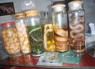 Some of the illegal wildlife contraband found for sale at a Najomtien snake farm.