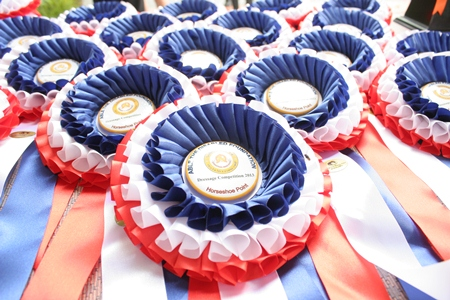 The beautiful rosettes (and the medals) were a perfect end to a wonderful day.