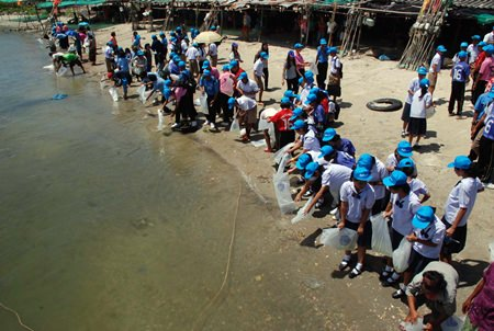 Rayong's Fishing Department enlisted school children, local residents and local officials to help them release more than 7 million shrimp, crabs and fish into the sea.