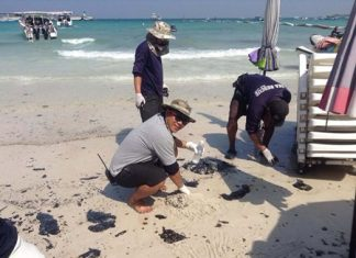 Rescue workers clean up oil deposits from at Koh Larn's Tawan Beach.