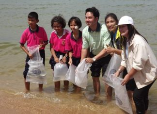Mayor Itthiphol Kunplome (center) helps release 2,000 silver perch into the sea for World Environment Day.