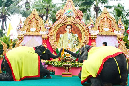 Nong Nooch Tropical Gardens marked Father's Day with elephants placing flower garlands in front of a portrait of His Majesty.