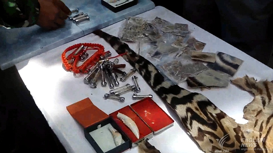 Tiger's hides and amulets seized from a truck leaving Tiger's Temple