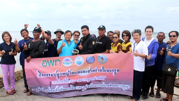Rayong's Marine Development and Research Center recently planted sea grass in Naklua Bay.
