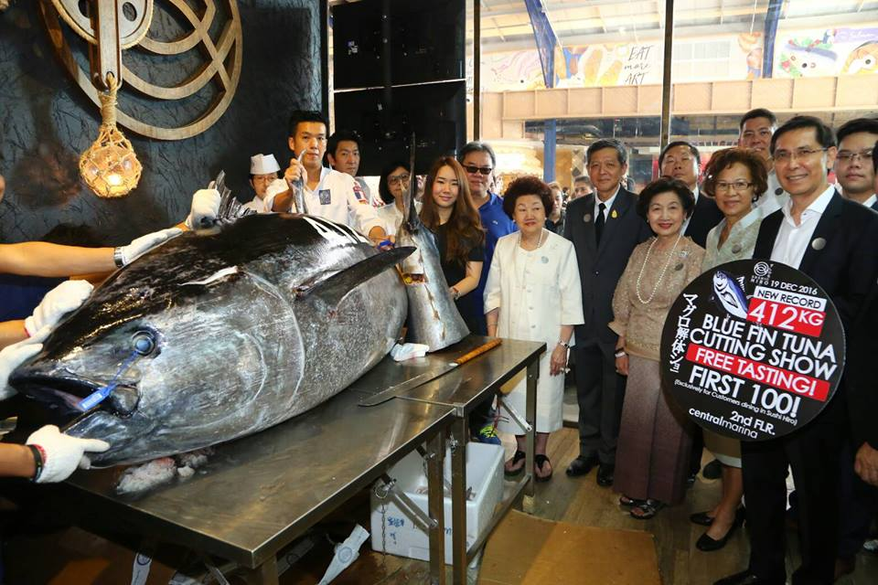 "The highlight of the event was the slicing of the ""hon maguro"", the largest Bluefin tuna in Thailand at 412 kilograms."