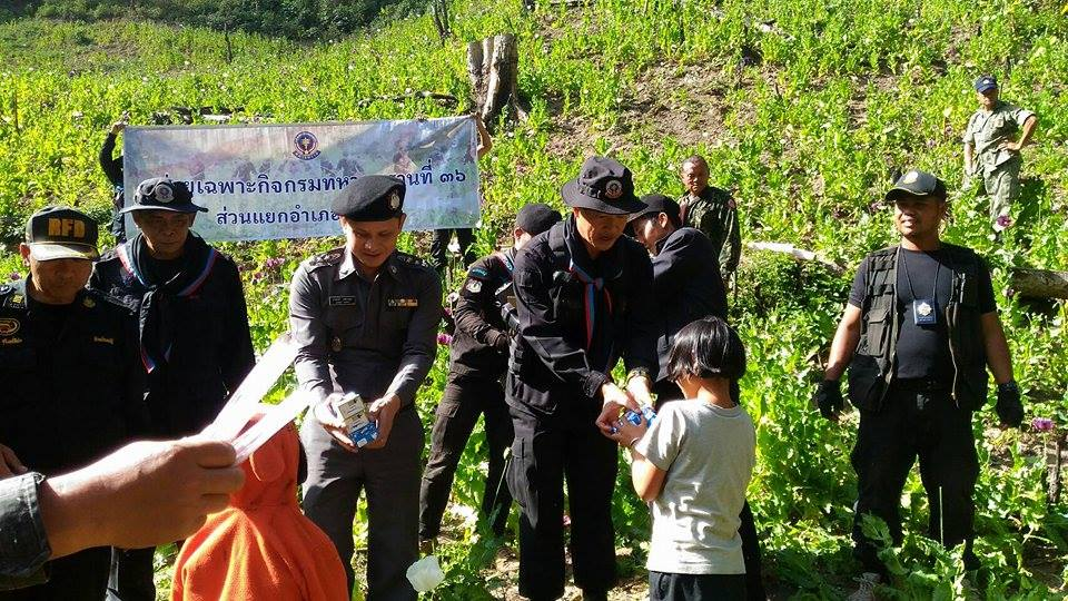 The 36th Ranger Regiment led by Col. Pat Wongsarapee distributed food and milk to students in Om Koi in an area known for growing opium poppies in a bid to educate and reduce the amount of cultivation of the illegal plant.
