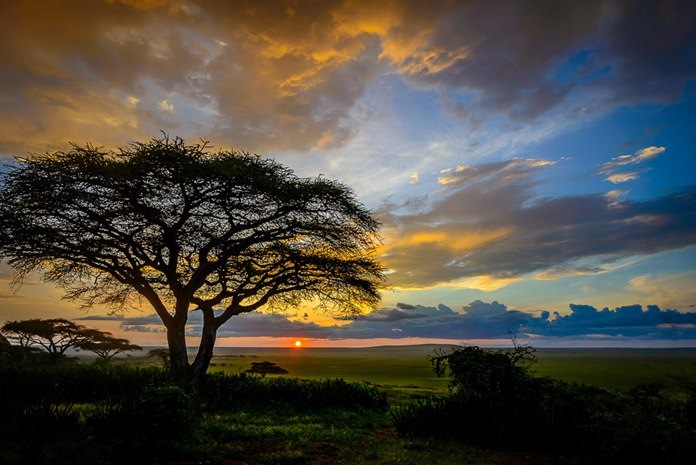 Beautiful and mesmerizing - sunset over the plains of Tanzania.