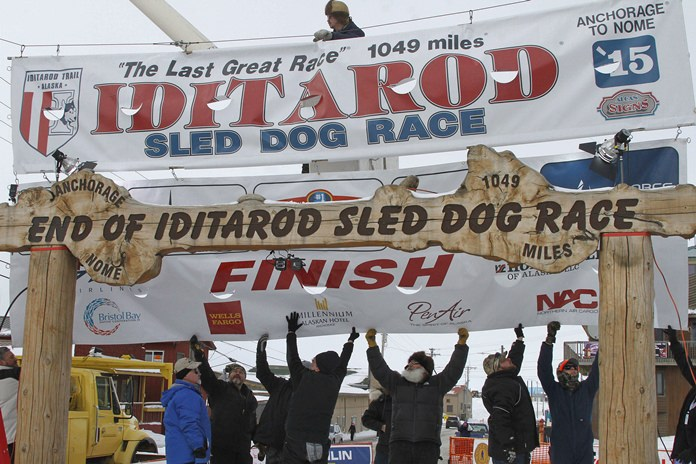 Officials Identify Musher In Dog Doping Case