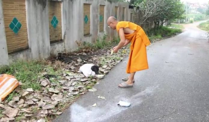 Preecha Intasaro came to the rescue of five dogs tied up in a sack and tossed to the side of the road near Pattaya.