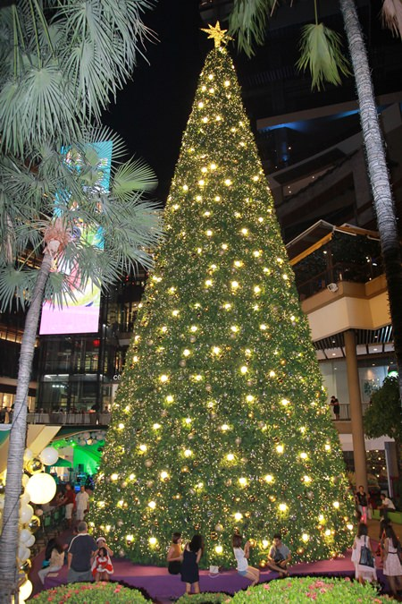 They don't come much bigger than the Christmas tree at Central Festival Pattaya Beach.