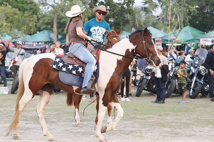Anybody for a horseback ride?