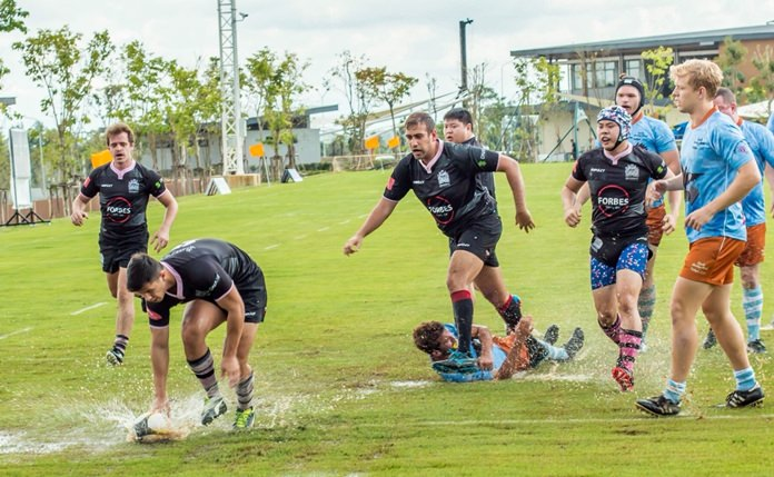 Damp conditions couldn't stop the quality rugby on show.
