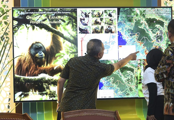 In this Nov. 3, 2017 file photo, Director General of Conservation of Natural Resources and Ecosystem at Indonesian Forestry Ministry Wiratno (center), inspects a screen displaying the map of Batang Toru Ecosystem in North Sumatra, Indonesia. (AP Photo/Tatan Syuflana)