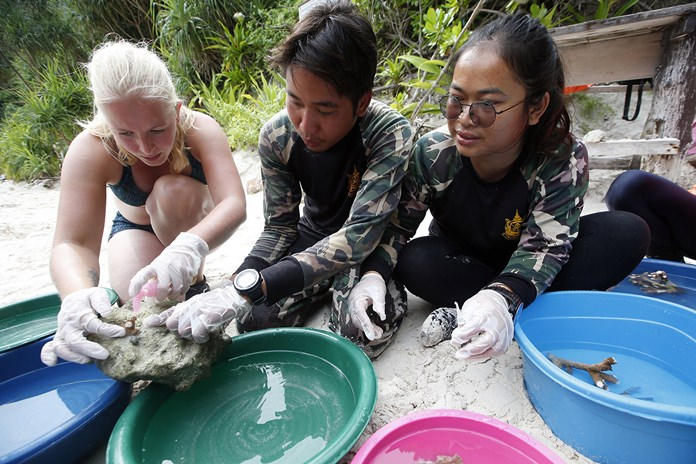 Jeanette van Leeuwin, a 29-year-old from The Netherlands, helps national park rangers with coral propagation on Maya Bay, Koh Phi Phi Leh in Krabi province.