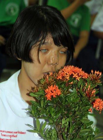 A plant for all teachers.