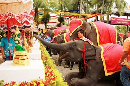 Elephants perform Rod Nam Dam Hua, bathing the Buddha statues.