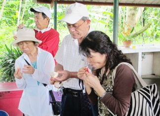 Some of the Japanese guests are tasting certain types of fruit for the first time.