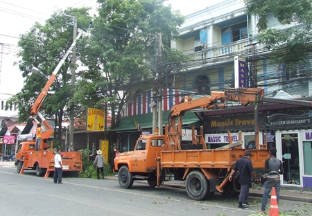 Workers trim trees to keep them from interfering with power lines.