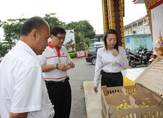 Sattahip officials donate 500 ducklings to Plutaluang farmers.