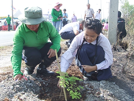City officials, students and teachers plant trees to honor HM the King.