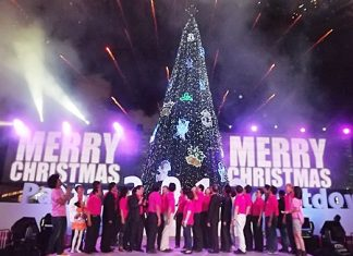 City officials light the Christmas tree at Bali Hai pier, officially starting the weeklong countdown to 2012.