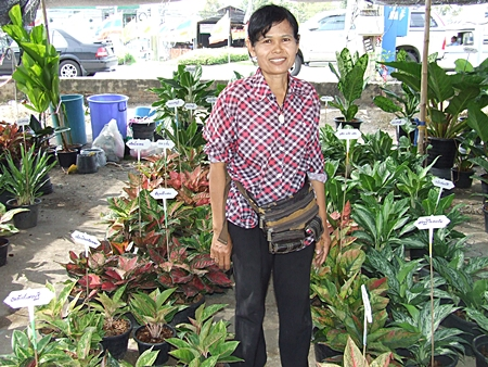 Phinantha Porncharoen sells her home-grown plants at the Klongthom Market.