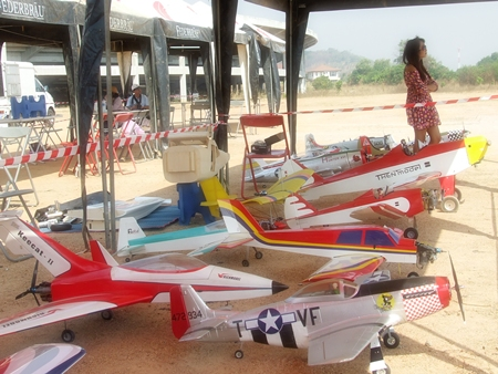 A stable of RC planes ready for the show.