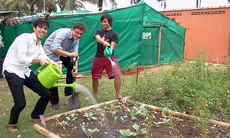 Link, Denis and Hugh making sure the plants are watered.