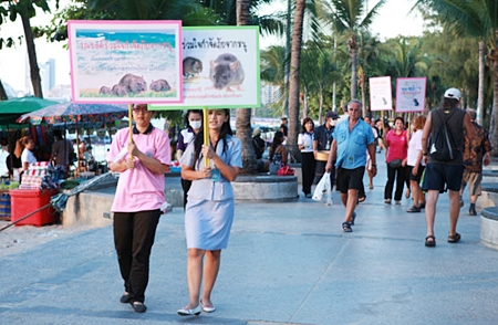 City workers parade down the beach promenade with placards announcing their intention to redouble efforts to cull the rat population.
