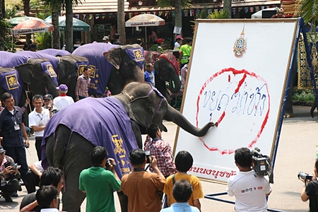 """A clever 9-year-old female elephant cleverly writes """"Stop Killing Elephants""""."""