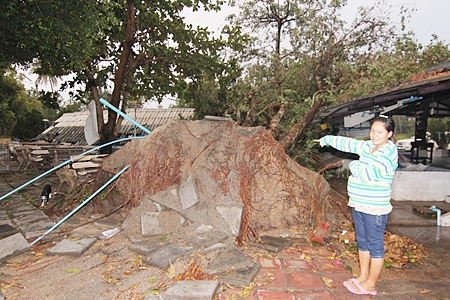 Heavy winds during the March 31 storm were felt throughout the area, including Payoon Beach where the Chai Talay Payoon Seafood restaurant was destroyed when a heavy tree fell on it. No one was injured.