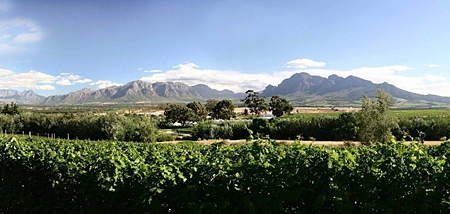 Breede River Valley, South Africa.