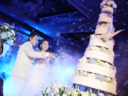 The bridal couple cuts the cake.
