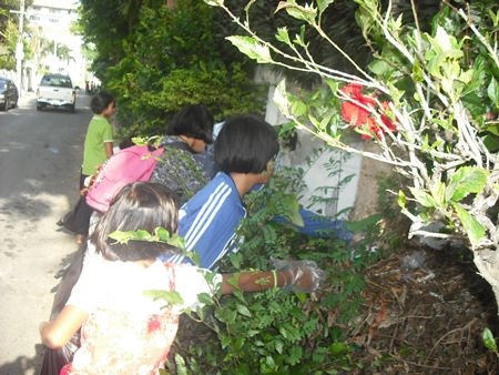 Children from the Child Protection and Development Center dig deep into the brush to pick up litter.