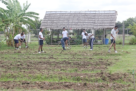 One group of sailors worked hard to till the center's garden.