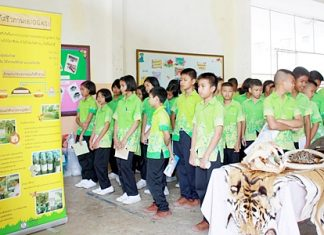Sattahip students learn about sustainable use of natural resources, and how to live more in harmony with nature.