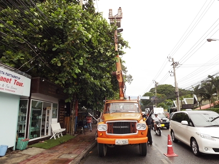 PEA workers trim trees that could break wires during windy conditions along Central and Second roads.
